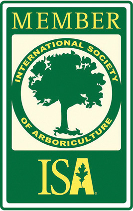 ISA Certified Arborist ON-177AO